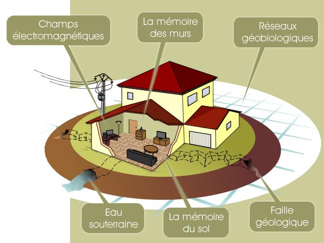 Géobiologie - Influence des contraintes